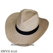 Men's Hat SWVN 8143